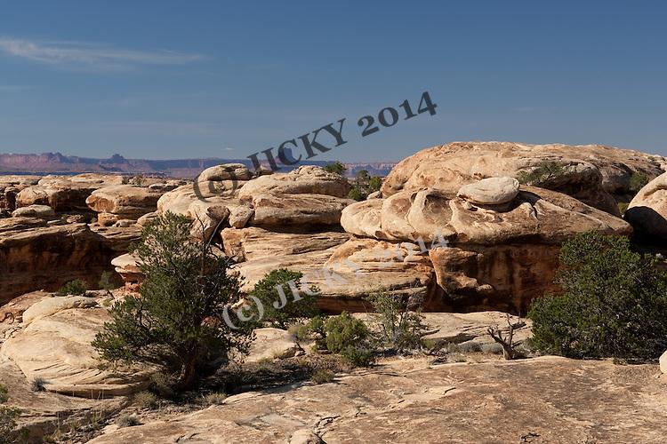Hoodoos - Cedar Mesa Sandstone formations