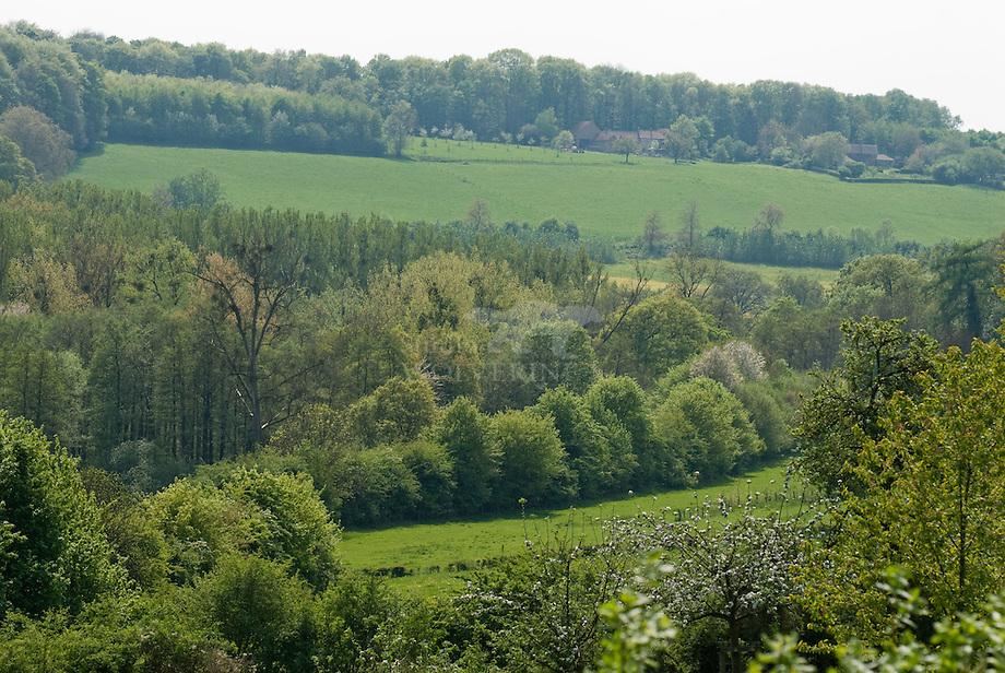 Dal van de Noorbeek - Limburg