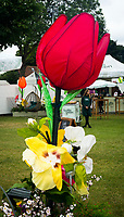 Henley Royal Regatta, Henley on Thames, Oxfordshire, 28 June - 2 July 2017.  Thursday  11:31:17   29/06/2017  [Mandatory Credit/Intersport Images]<br /> <br /> Rowing, Henley Reach, Henley Royal Regatta.