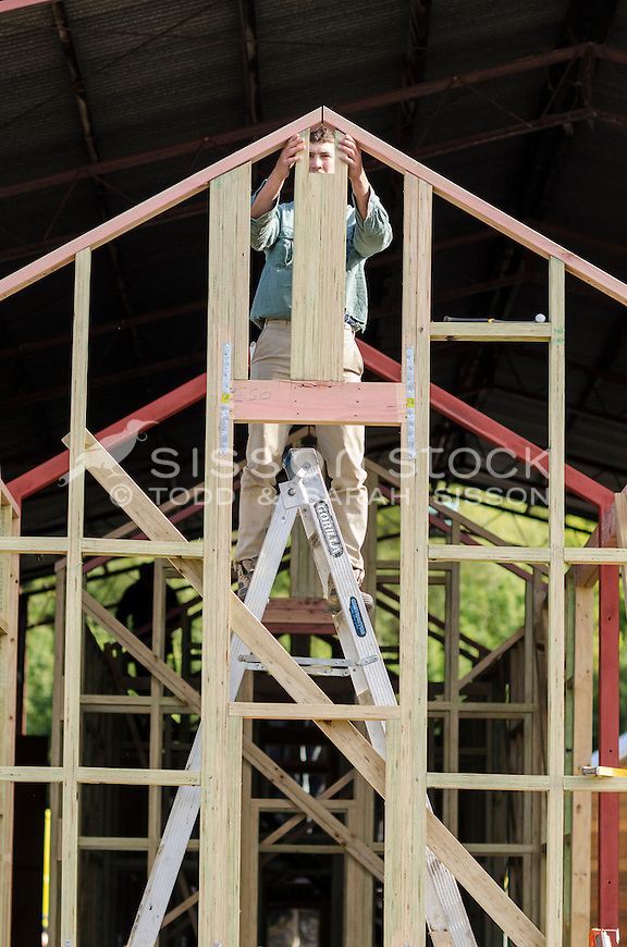 New Zealand Photos |Young male carpenter building wooden