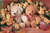 Interlitho, Alberto, CUTE ANIMALS, teddies, photos, 2 teddies, roses(KL15450,#AC#)