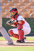 Glendale Desert Dogs catcher Tucker Barnhart (22), of the Cincinnati Reds organization, during an Arizona Fall League game against the Mesa Solar Sox on October 8, 2013 at Camelback Ranch Stadium in Glendale, Arizona.  The game ended in an 8-8 tie after 11 innings.  (Mike Janes/Four Seam Images)