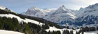 The wetterhorn and Schreckhorn mountains from Busalp tobogan slopes - near Grindelwald - Swiss Alps - Switzerland