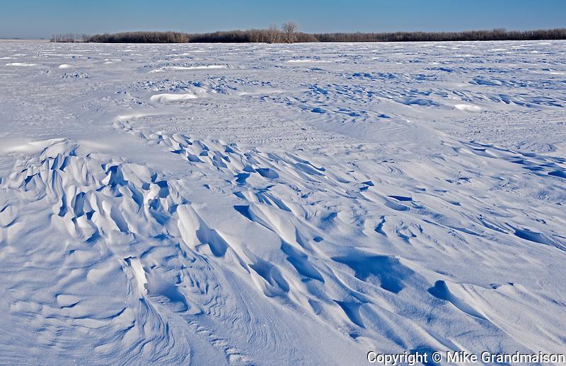 WInd blown prairie landscape in winter<br /> Grande Pointe<br /> Manitoba<br /> Canada