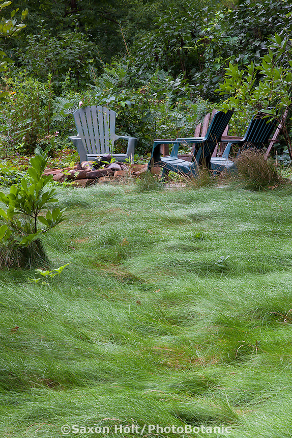 Chairs by no mow lawn with fescue meadow grass mix in Minnesota garden