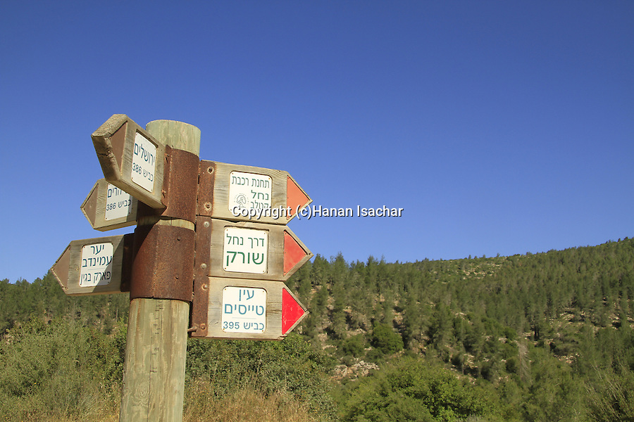 Israel, Jerusalem mountains, the trail to the old Bar Giora train station
