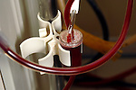 Close-up of the tubing on a haemodialysis machine. Royalty Free