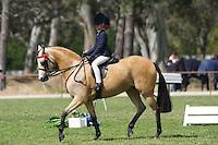 Champion Rider 6-9