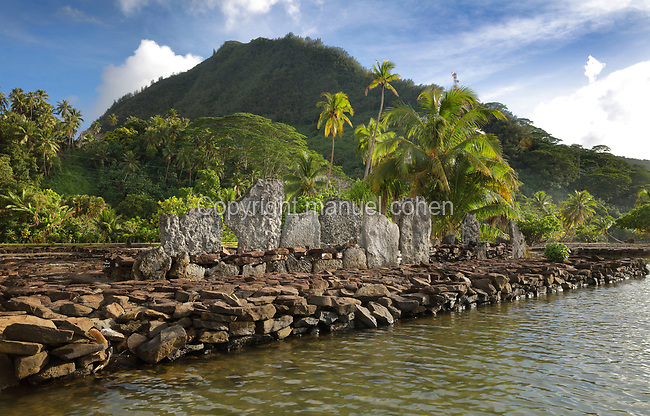 Marae Vaiotaha, a stone courtyard with platform and standing stones, built by a Polynesian civilisation and used as a ceremonial and religious site, on the banks of Lake Fauna Nui or Maeva Lake, at the archaeological site at Maeva village, on Huahine-Nui on the island of Huahine, in the Leeward Islands, part of the Society Islands, in French Polynesia. This marae is linked to the Fare-Tou chiefdom and was used for worshipping ancestors and gods, and offerings were made here. They are thought to date from 13th - 15th centuries. Maeva is thought to be an abandoned royal settlement, with many megalithic structures including marae, houses, agricultural structures, stone fish traps and fortification walls. Picture by Manuel Cohen