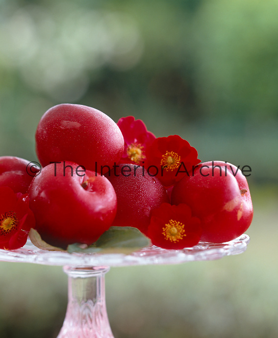 Detail of a glass cake stand with a pile of red plums interspersed with flowers