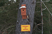 Wood bird house nailed to a large pine tree, Defense de passer sign in Quebec