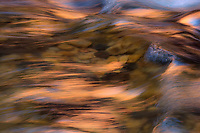 An intimate look at the form and reflected light of the Virgin River in Zion National Park.
