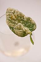 Europe/France/Auverne/63/Puy-de-Dôme/Durtol: Amuse-Bouche: Légume  en beignet façon tempura, recette de  Xavier Beaudiment - Restaurant: Le Pré Carré