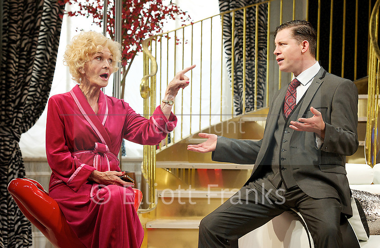 Barking in Essex <br /> by Clive Exton <br /> at Wyndham's Theatre, London, Great Britain <br /> Press photocall<br /> 13th September 2013 <br /> <br /> directed by Harry Burton <br /> <br /> Lee Evans as Darnley Packer<br /> <br /> Sheila Hancock as Emmie Packer<br /> <br /> Keeley Hawes as Chrissie Packer<br /> <br /> Karl Johnson as Rocco Dimaggio <br /> <br /> Montserrat Lombard as Allegra Tennyson <br /> <br /> Photograph by Elliott Franks