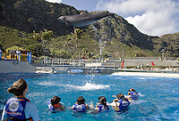 Dolphin jumping out of the water at Sea Life Park as children watch