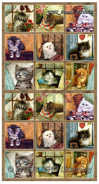 GIORDANO, CUTE ANIMALS, LUSTIGE TIERE, ANIMALITOS DIVERTIDOS, paintings+++++,USGIFRAMEKITSCN,#ac#, EVERYDAY,cats,puzzles