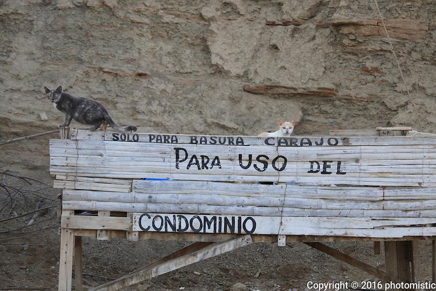 Los Organos, Peru