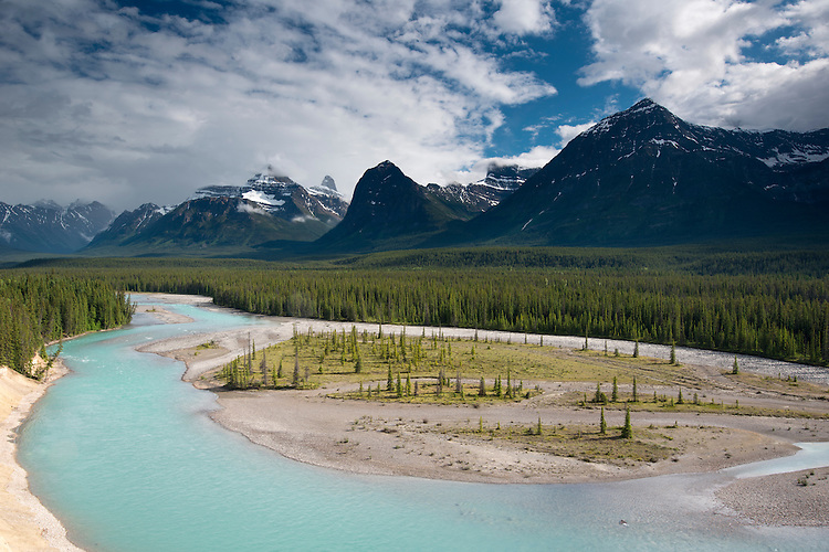 Athabasca River on the Icefields Parkway, Jasper National Park, Alberta, Canada