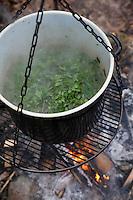 Kräutersuppe über Lagerfeuer, Suppe aus Wildgemüse, Kräuter, Feuer, Outdoor. soup, Feuerstelle, Campen, fire, bonfire, campfire, camping