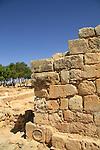 Samaria, Jama al Yatim, a prayer building from the Muslim period in Tel Shiloh