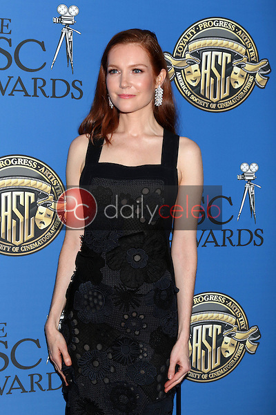 Darby Stanchfield<br /> at the 31st Annual American Society Of Cinematographers Awards, Ray Dolby Ballroom, Hollywood, CA 02-04-17<br /> David Edwards/DailyCeleb.com 818-249-4998