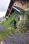 """Andrew and Patricia Nimelman cosult with Donna Smith (otherwise known as """"Your Backyard Farmer) at their home in NE Portland, OR. Lavender and other flowers attract beneficial insects as well as pollinating insects and birds."""