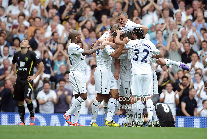 Jake Livermore celebrates a goal for Tottenham Hotspur during the Barclays Premier League match between Tottenham Hotspur and Norwich City at White Hart Lane on September 1, 2012 in London, England. Picture Zed Jameson/pixel 8000 ltd.