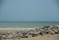 RIOHACHA -COLOMBIA. 30-05-2014. Playa de Riohacha capital del Departamento de la Guajira, Colombia. / Beach of Riohacha capital of the deparment of Guajira, Colombia. Photo: VizzorImage/ Gabriel Aponte / Staff