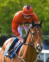 Garcon De Soleil ridden by Rob Hornby goes down to the start Winner of The Smith & Williamson Handicap (Class 6)     during Afternoon Racing at Salisbury Racecourse on 17th May 2018