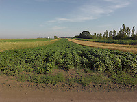 AG_LOCATION_65052