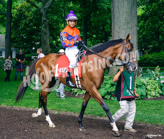 Biz The Nurse before The Cape Henlopen Stakes at Delaware Park on 7/9/16