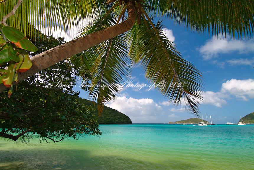 Big Maho Bay Beach.<br /> Maho Bay, St John.<br /> Virgin Islands National Park