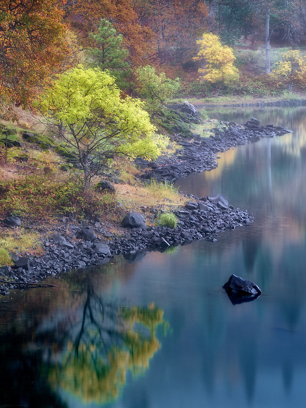 Small lake and fall color near the Colubmia River. Columbia River National Scenic Area, Washington