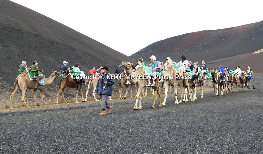 LANZAROTE, CANARY ISLANDS - Camel Riding in Timanfaya National Park, during January 2016 in Lanzarote, Canary Islands<br /> <br /> Photo by Keith Mayhew