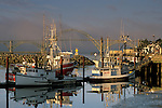 Fog at sunrise over commercial fishing boats in harbor and Yaquina Bay Bridge, Yaquina Bay, Newport, Oregon Coast