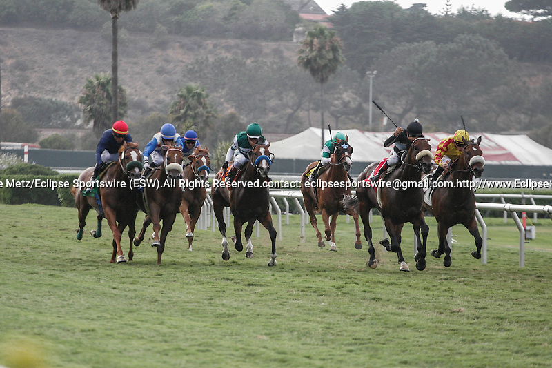 Shrug (num 1) winning the Green Flash Handicap at Del Mar Race Course in Del Mar, California on August 15, 2012.
