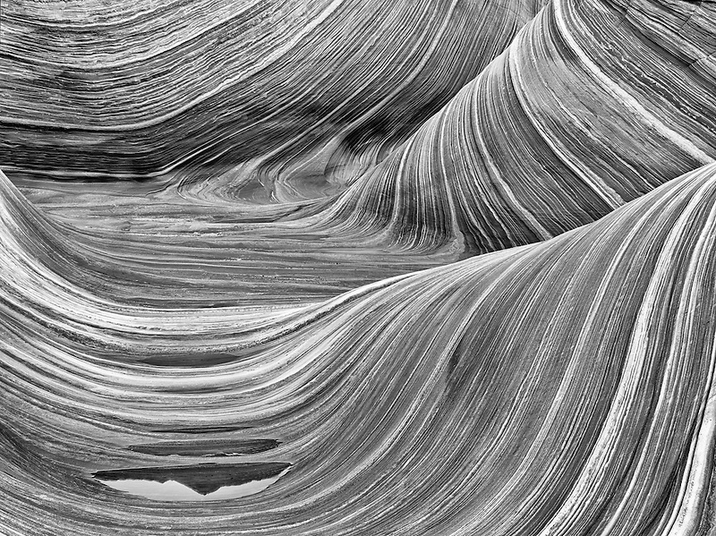 Sandtone formation and pool of water in North Coyote Buttes, The Wave. Paria Canyon Vermillion Cliffs Wilderness. Utah/Arizona