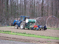 Planting Crops, Threefold Farm, Chestnut Ridge, NY Gardens and Farms,