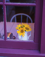 Looking through window of house at sunflowers in vase.