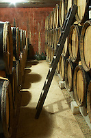 Domaine de Montcalmes in Puechabon. Terrasses de Larzac. Languedoc. Barrel cellar. France. Europe.