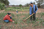 Rosa Antesano and her husband Jose Ortega work in their garden in the Guarani indigenous village of Choroquepiao, in the Chaco region of Bolivia. They and their neighbors started the gardens with assistance from Church World Service, supplementing their corn-based diet with nutritious vegetables and fruits.