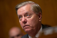 United States Senator Lindsey Graham (Republican of South Carolina) listens during the U.S. Senate Committee on the Judiciary hearing on Capitol Hill in Washington D.C., U.S. on July 31, 2019.<br /> <br /> Credit: Stefani Reynolds / CNP/AdMedia