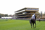 LONGCHAMP, FRANCE - October 06, 2018: View at the renovated Grandstand of the Longchamp race track.