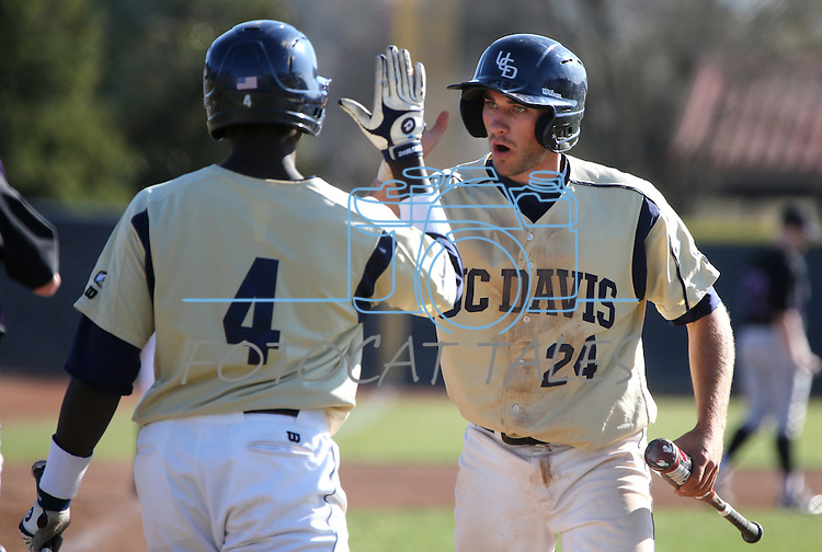 UC Davis' Kevin Barker greets Paul Politi at the plate in a college baseball game between the Washington Huskies and the UC Davis Aggies in Davis, Ca., on Sunday, Feb. 17, 2013. Davis won 7-5 to finish their season opening series 3-1. .Photo by Cathleen Allison