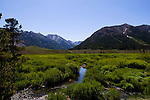 Star Hope Creek in the Copper Basin in Idaho near Sun Valley
