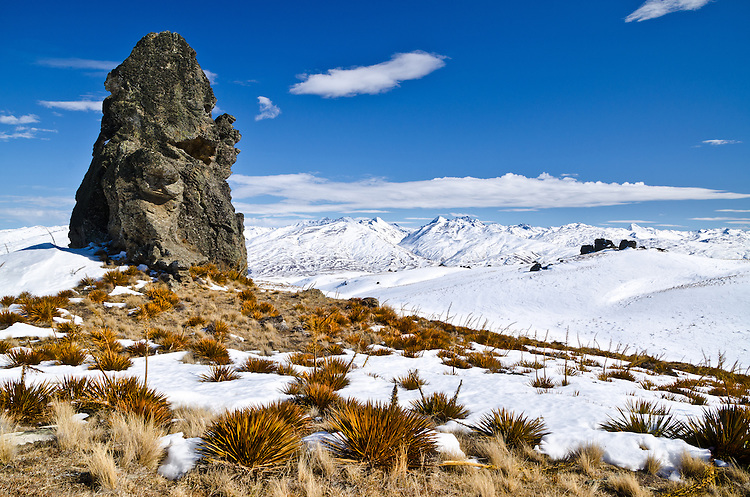 Rock Tor & Spaniard Grass, Duffers Saddle, Winter, Central Otago, South Island, New Zealand - stock photo, canvas, fine art print