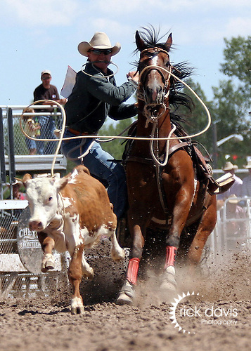 Jess Tierney competes in the tie-down roping at Cheyenne Frontier Days