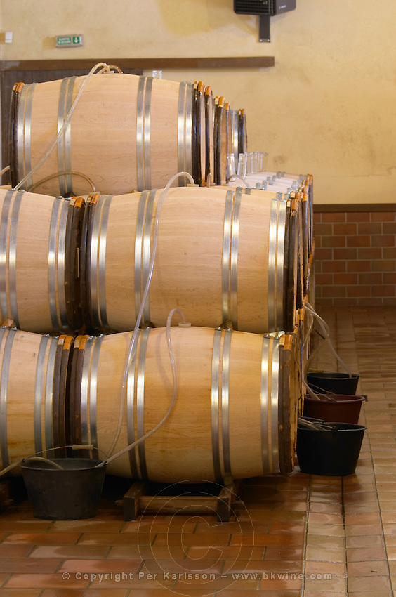 barrels with fermenting wine with tubes to collect overflow chateau guiraud sauternes bordeaux france