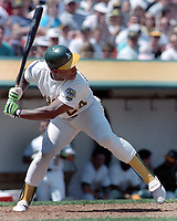 Oakland Athletics Rickey Henderson...(2000 photo/Ron Riesterer)