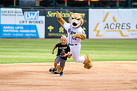 Kane County Cougars mascot Ozzie races a young fan around the bases during a Midwest League game against the Quad Cities River Bandits on July 1, 2018 at Northwestern Medicine Field in Geneva, Illinois. Quad Cities defeated Kane County 3-2. (Brad Krause/Four Seam Images)